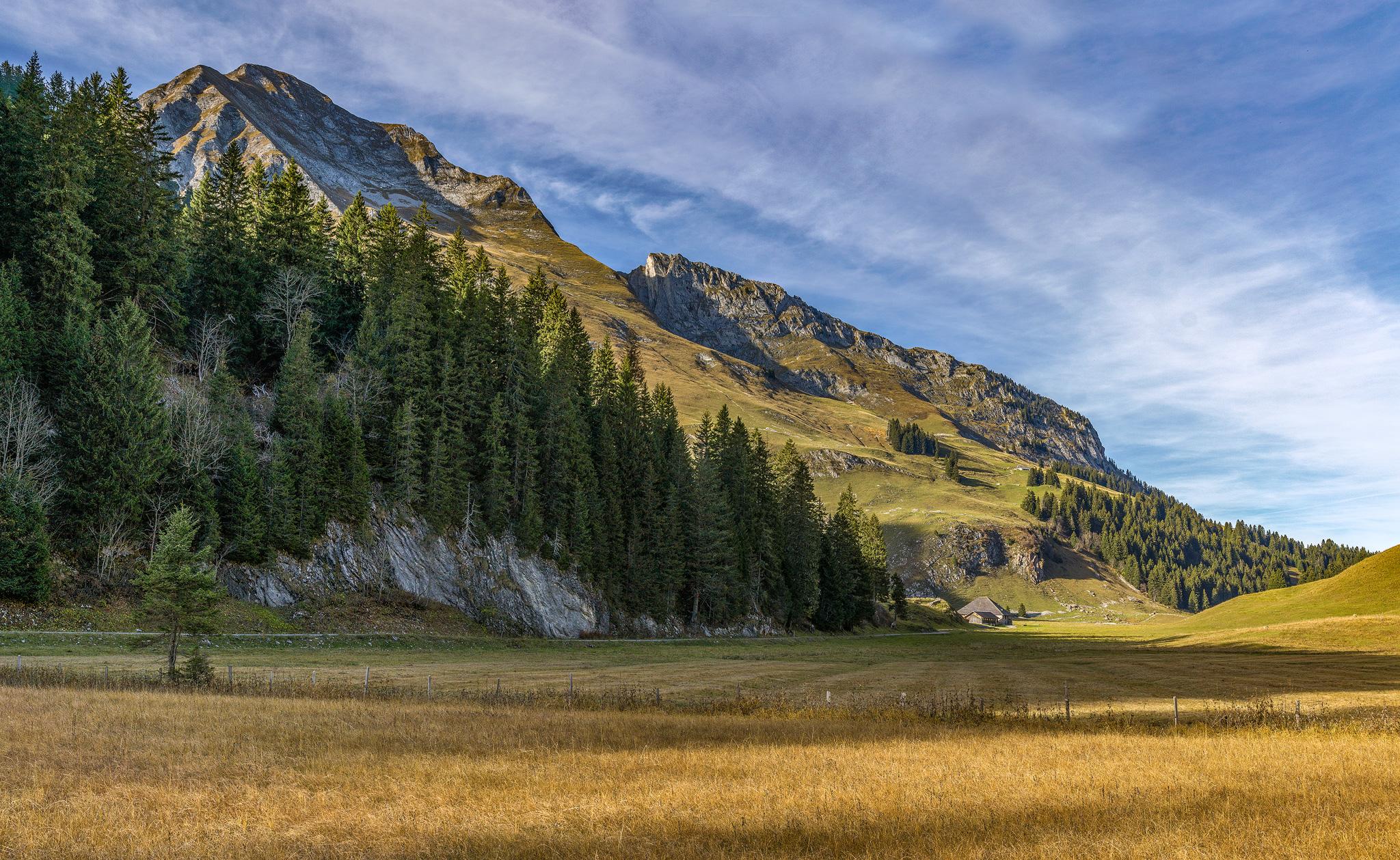 Gros Mont, Jaun.