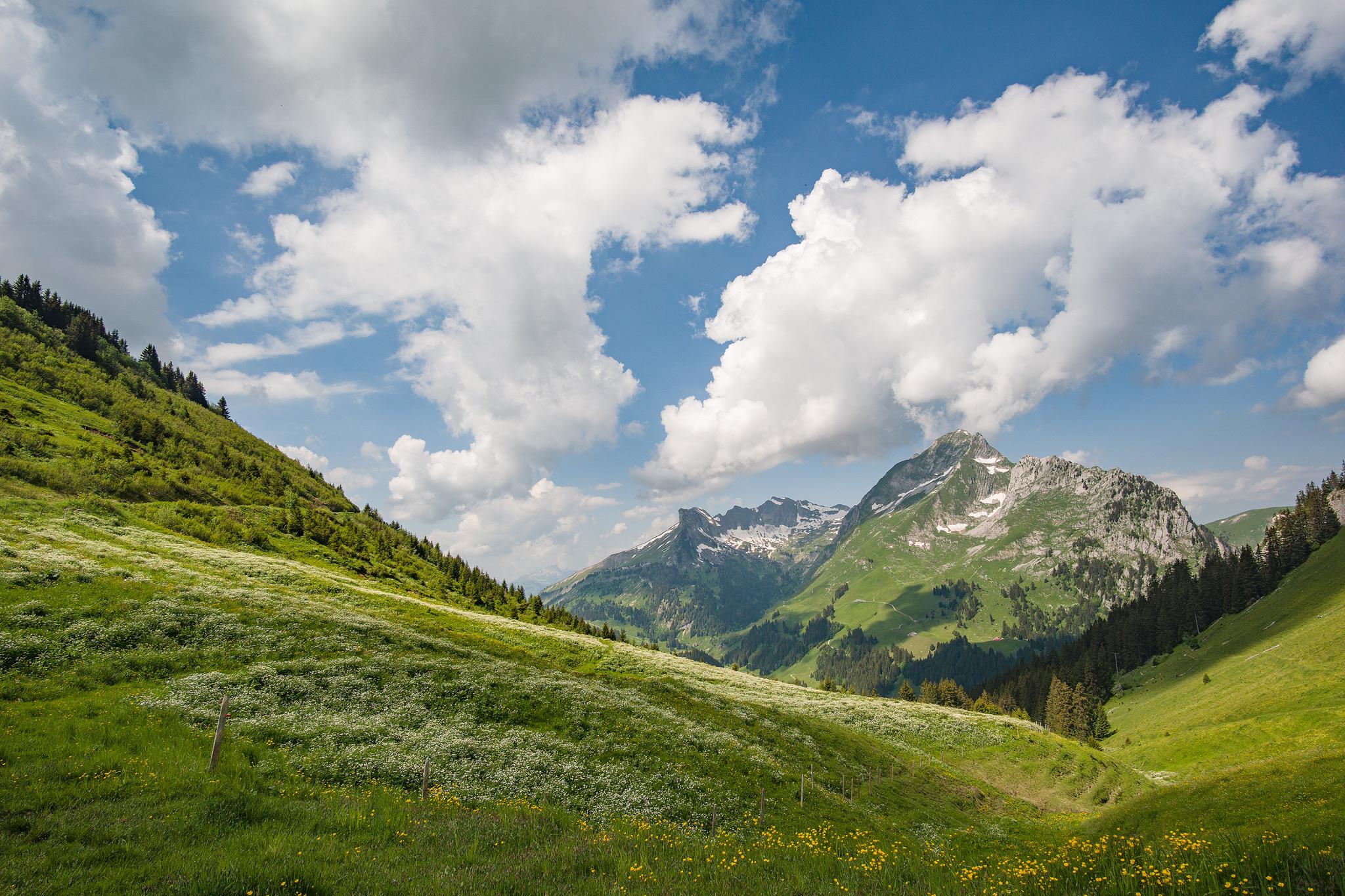 La Gueyere, Switzerland, Hochmatt.